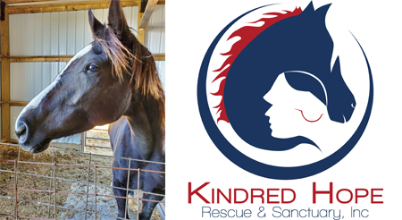 Equine sanctuary, Kindred Hope comes to Skyline